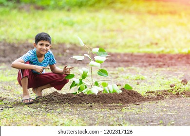 kid planting tree and showing empty board