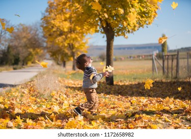 Kid play with fallen yellow leaves for a walk in the village. Family holidays