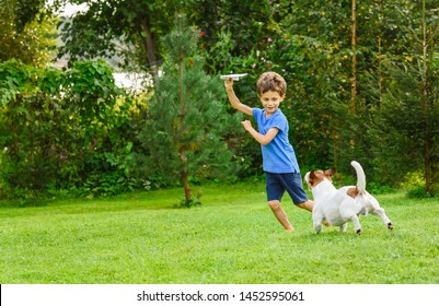 Kid playing with paper airplane and dog outdoors at backyard lawn