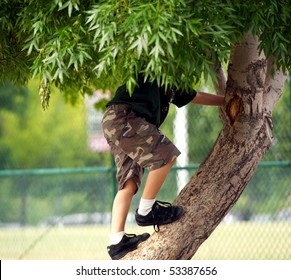 kid playing in the tree tops