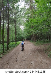 Kid riding a bike in green forest, view from back