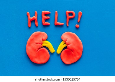 Kidney illness and treatment. Word help and organ on blue background top view