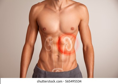Kidney Pain Images Stock Photos Vectors Shutterstock