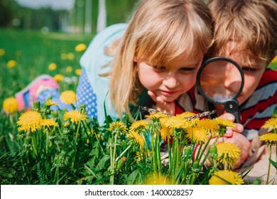 kids - boy and girl - looking at butterfy, kids learning nature