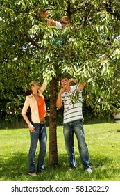 kids climbing on a tree - happy family outdoor