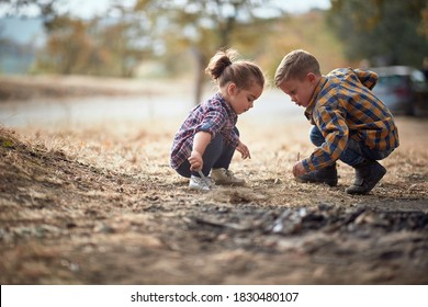 Kids Looking at Bugs Stock Photos, Images & Photography   Shutterstock
