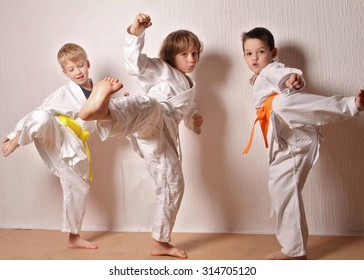 Kids during karate training. Martial arts.Sport, active lifestyle concept