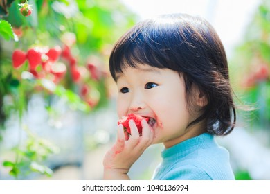 Kids eat strawberries