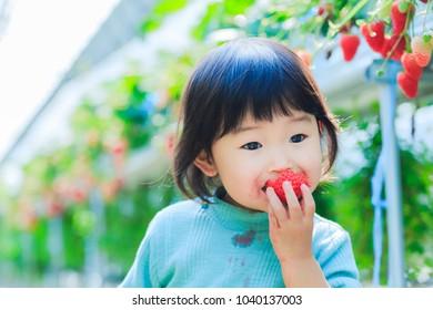 Kids eat strawberries