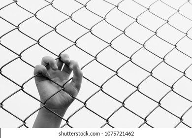 Kid's hand on a metal wire mesh fence. Black and white tone. Concept for child abuse, human trafficking, crime and domestic violence.