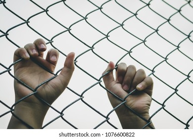 Kid's hand on a metal wire mesh fence. Concept for child abuse, human trafficking, crime and domestic violence.