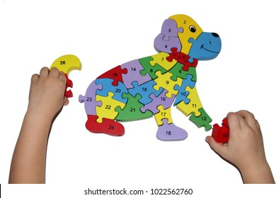 The kid's hands collect a bright puzzle on a white background. A child puts a puzzle of a dog close-up of an isolate puzzle.