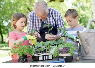 Kids helping grandpa with gardening
