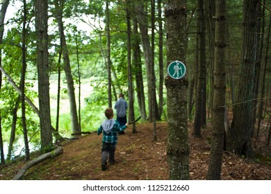 Kids Hiking Down a Wooded Path with a Green Trail Marker on a Tree