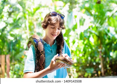 Kids holding python snake in tropical zoo. Children watching exotic reptile. Teenage boy with snakes on school trip to safari park. Brave kid learning to overcome fear and phobia. Rainforest animals.