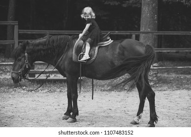 Kids horse school. Friend, companion, friendship. Girl ride on horse on summer day. Equine therapy, recreation concept. Child smile in rider saddle on animal back. Sport, activity, entertainment