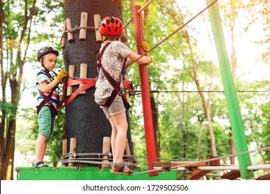 Kids passing the cable route high among trees. Young brothers climbing in high rope course in adventure park. Children in forest adventure park. Kids in safety helmets, extreme sport. Summer camp.