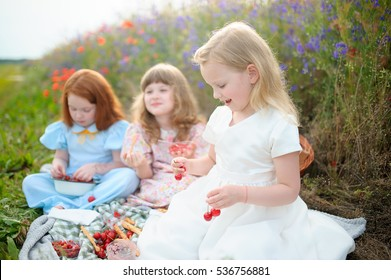 Kids picking cherry on a field. Children pick cherries in summer picnic. Girlfriends eat fresh fruit. Girl and friends eating berry in the picnic. Harvest time fun for family