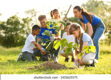 Kids planting trees with volunteers in park