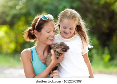 Kids play with farm animals. Child feeding domestic animal. Young mother and little girl holding wild boar baby at petting zoo. Kid playing with newborn pig. Children and pets. Family at farm vacation