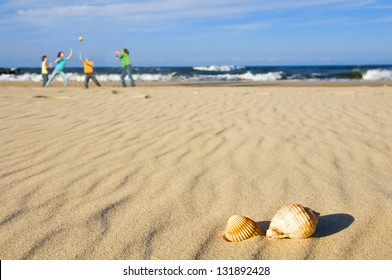 Kids playing ball on the beach with shells