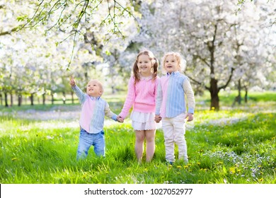 Kids playing in blooming cherry blossom garden. Little boy and girl with spring flowers in fruit orchard. Easter egg hunt in apple tree farm. Cherry flower celebration with children. Siblings love.