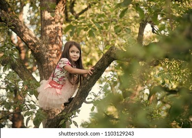 Kids playing - happy game. Little young girl climbed on tree and sitting on tree branch.