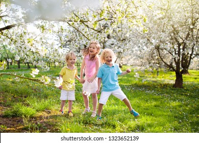 Kids playing in spring park. Children running in sunny garden with blooming cherry and apple trees. Boy and girl play outdoors. Brothers and sister run and jump in backyard. Siblings love.