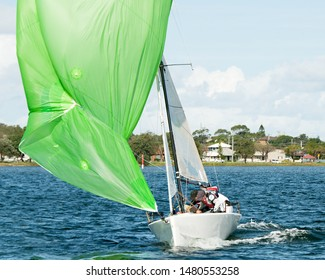 Kids sailing small sailboat head-on closeup with a fouled green spinnaker sail. Teamwork by junior sailors racing on saltwater Lake Macquarie. Photo for commercial use.