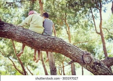 Kids sitting together on tree
