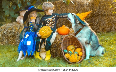 Kids smiling on a Halloween party. Cute children daughter and son making funny faces with a pumpkin. Trick-or-treat child concept