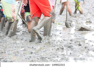 kids walking in the mud for growing tree in mangrove area