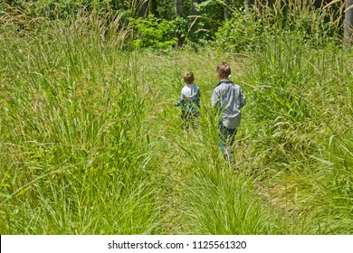 Kids Walking Through a Meadow of Tall Grass