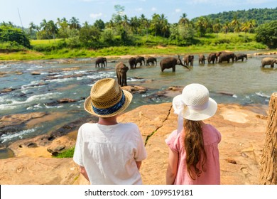 Kids watching Sri Lankan elephants at riverbed drinking water