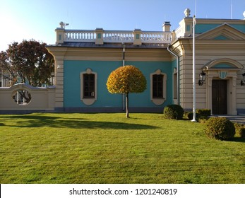 Kiev, autumn tree with a figured crown on the background of the Mariinsky Palace, a historic building in the Baroque style, the main residence of the President