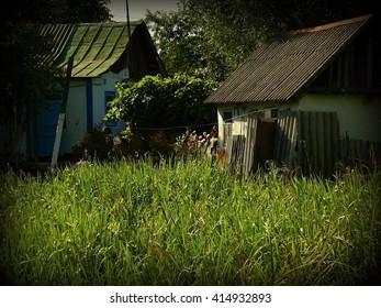 Kiev region. Ukraine. In the village.