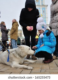 KIEV, UKRAINE � 30 NOVEMBER 2013: Unknown demonstrators with dog stage a strike with poster �Ukraine get up� after dispersal of proeuropean meeting on November 30, 2013 in Kiev, Ukraine.