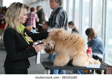 KIEV, UKRAINE April 28, 2007: Master brushes and combs the fur of a Pomeranian dog at a dog show