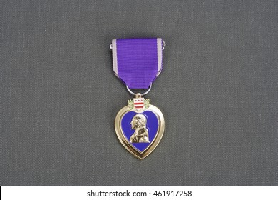 KIEV, UKRAINE - August 1, 2016. Purple Heart award on green uniform
