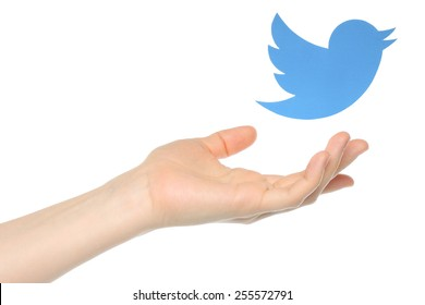 KIEV, UKRAINE - JANUARY 05, 2015: Hand with Twitter bird printed on paper flying away.Twitter is an online social networking service that enables users to send and read short messages.