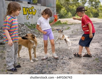 Kiev, Ukraine - Jule 11, 2008: Children playing with homless dogs on a street