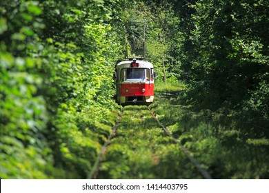 Kiev, Ukraine -  June 10, 2017: City tram is running through the green tunnel in the big dense forest (blurred background). Suburban tramline that connects the city of Kiev with Pushcha-Vodytsia