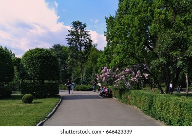 KIEV - UKRAINE - MAY 2017: Panorama of the Botanical Garden in Kiev. People walk in the park and makes a photos of rare plants. Blooming bush of lilac over a bench with women