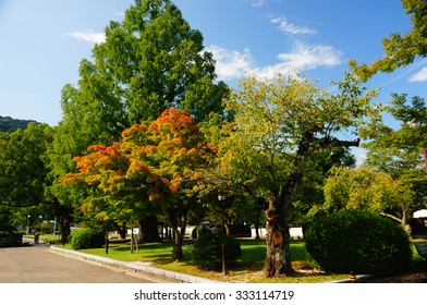 Kikko park near Kintai bridge in Iwakuni, Yamaguchi, Japan