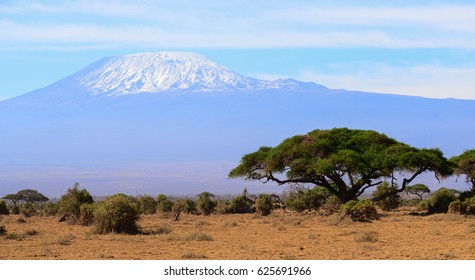Kilimanjaro Amboseli national park