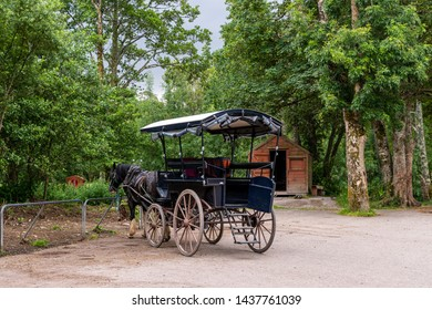 Killarney, Co. Kerry, Ireland - June 28, 2019: Horse drawn traditional jaunting car waiting to take tourists on a tour through the grounds of the Killarney National Park.