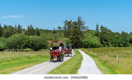 Killarney, Co. Kerry, Ireland - June 27, 2019: Horse drawn traditional jaunting cars taking tourists on a tour on the paved winding roads through the grounds of the Killarney National Park
