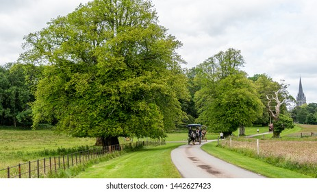 Killarney, Co. Kerry, Ireland - June 26, 2019: Horse drawn traditional jaunting cars taking tourists on a tour on the paved winding roads through the grounds of the Killarney National Park.