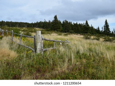 Killick Coast along Father Troy`s Path, Autumn pasture landscape, East coast trail near Torbay; Avalon Peninsula Newfoundland Canada