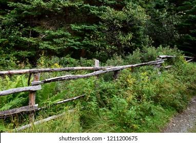 Killick Coast along Father Troy`s Path, Autumn pasture landscape, East coast trail neat Torbay; Avalon Peninsula Newfoundland Canada